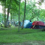 Scouts setting up Tents